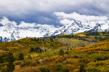 snow capped mountains and fall forest