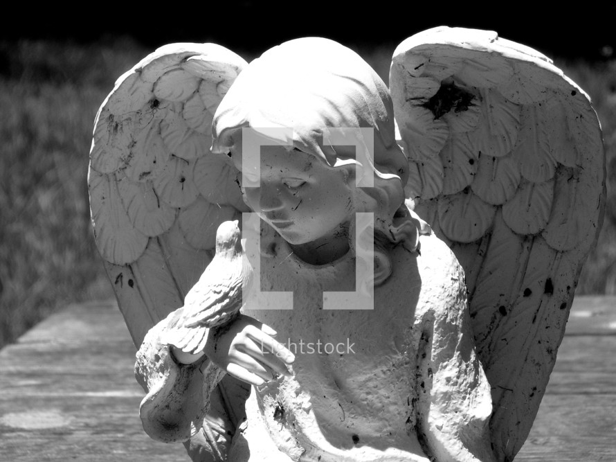 Feathered Friends - A statue of an angel and a bird fellowshipping together basking in the glow of the afternoon sun. Black and white photograph of an Angel and a little Bird spending time together taking a break from their daily flight patterns.