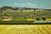 farmland in Switzerland