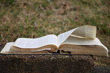 open Bible on a curb