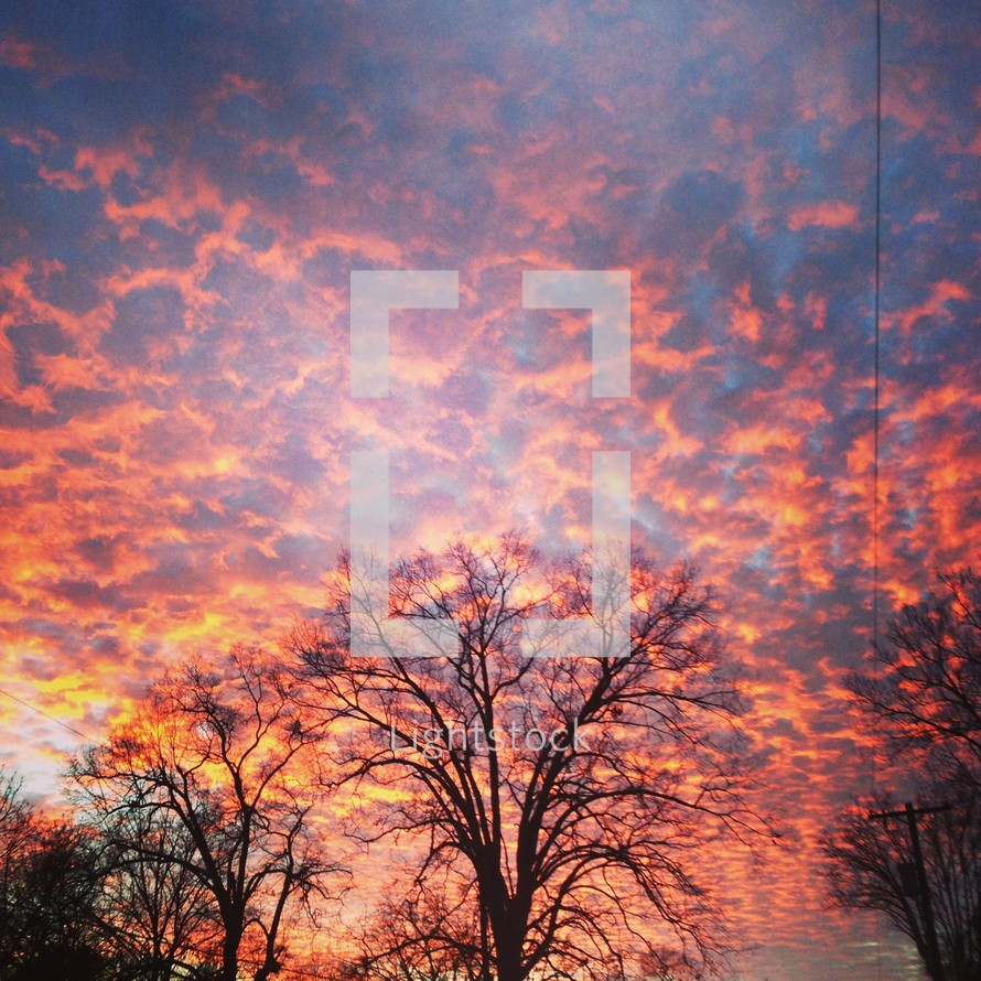 fiery pink and yellow clouds in the sky at sunset