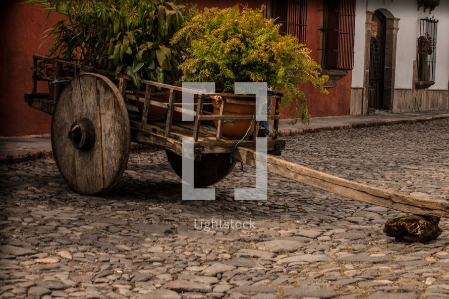 primitive wood wagon full of plants