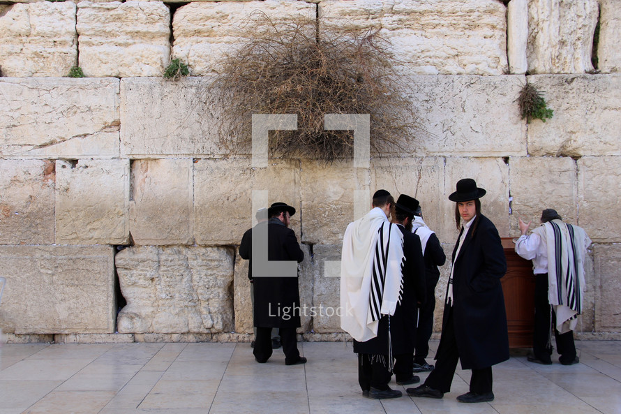 Orthodox Jews worshipping at the Western Wall in Jerusalem.
