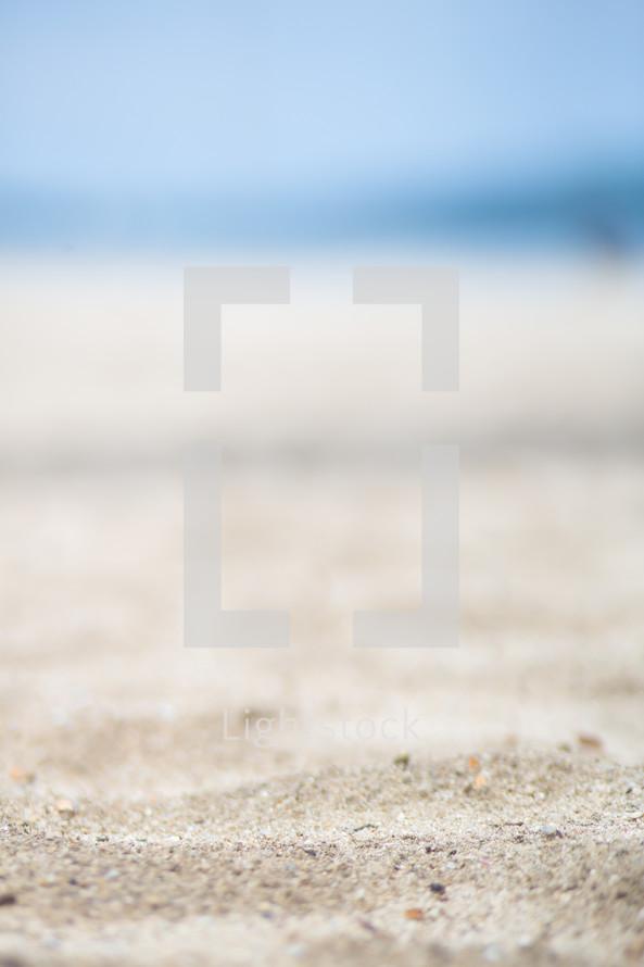 grains of sand on the beach