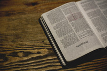 A Bible open to Philippians on a table with  heavy wood grain.