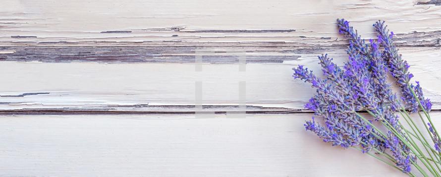 lavender on white wood