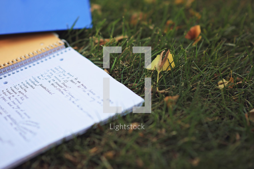 words on a notebook lying in the grass