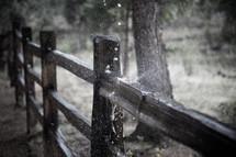 splashing water on a fence
