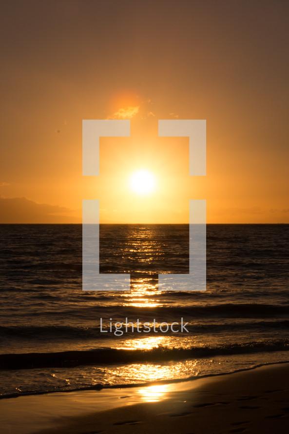 sun setting over a beach