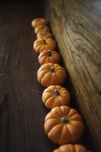 row of mini pumpkins
