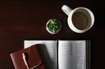 leather bound journal, open Bible, and house plant on a desk