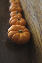 row of mini pumpkins on wood