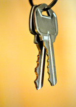 The keys to the car.