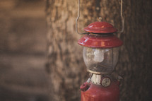 A red lantern in front of a tree