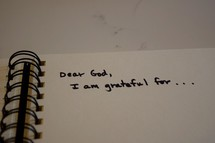 Dear God, I am grateful for . . .