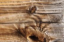 Wood grain on a plank