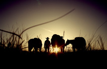 a cowboy standing with horses at sunset
