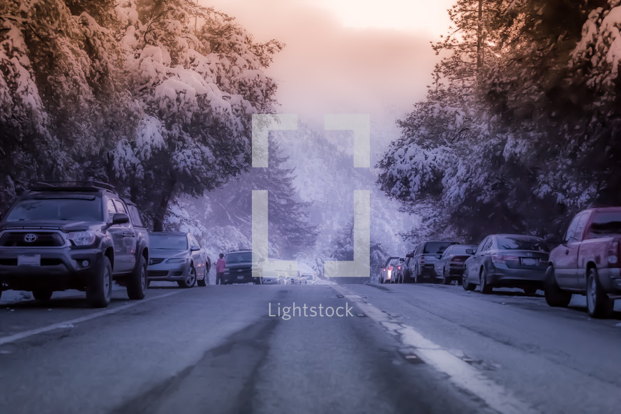cars parked on the side of a road and snow on trees