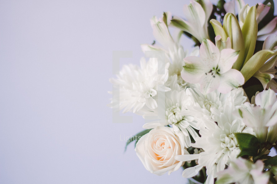An arrangement of white flowers.