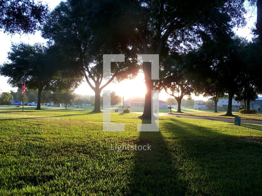 A morning sunrise with rays of sunlight stretching across a field of green grass and casting shadows on the lawn of large trees as the sun penetrates the morning bringing light into the world to start a new day in a typical residential neighborhood.