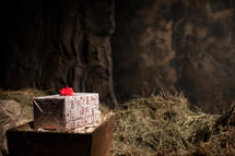 Wrapped box with red bowe in hay-filled wooden crate on top of pile of hay.