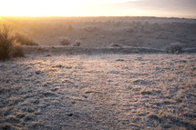 frost and snow on the ground