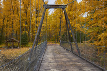 bridge over a river leading to a forest
