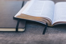 open Bible and journal on a wood table