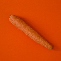 carrot on red