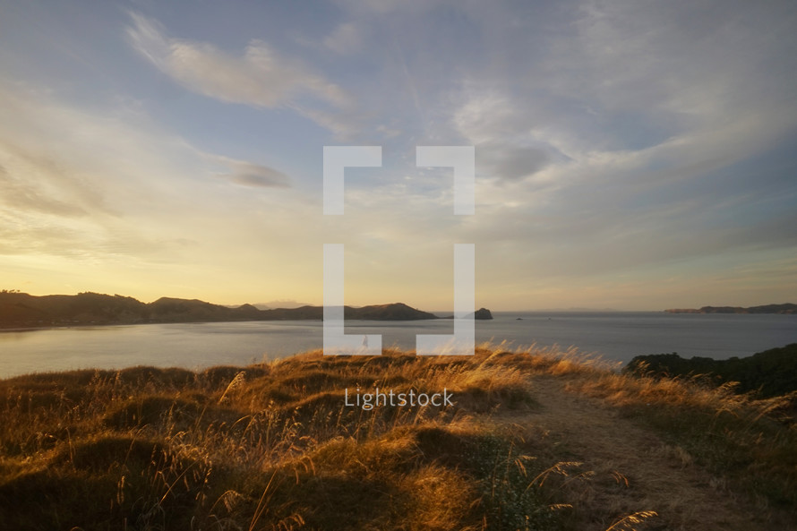 hill with grass along a shore at sunset