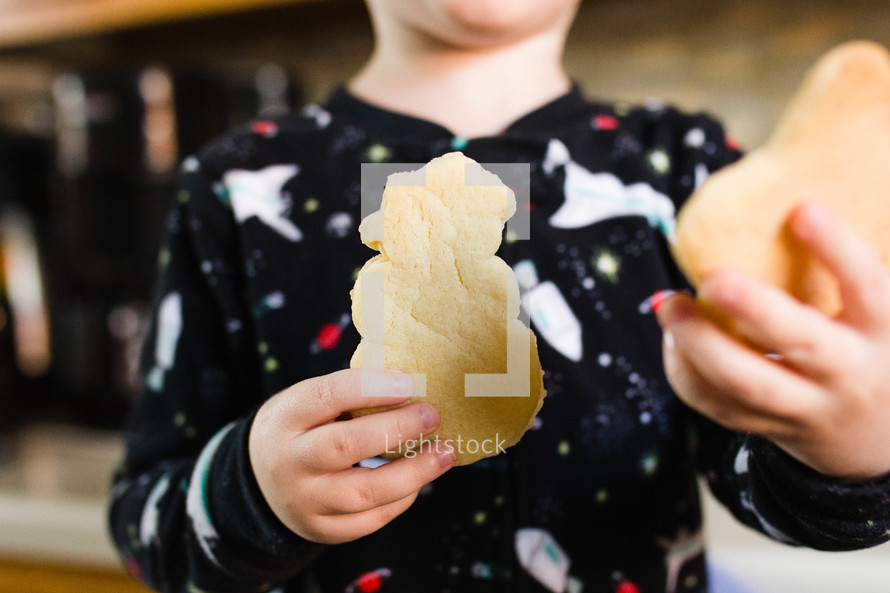 young boy with christmas cookies