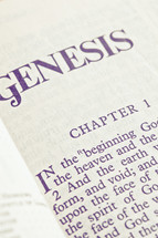 Genesis 1 - the creation story