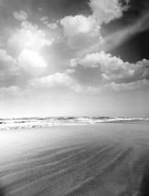 wet sand on a beach in Goa, India