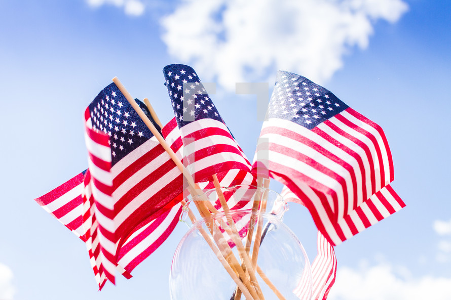 American flags in a vase and blue sky