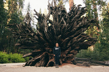 a woman standing in front of the roots of a fallen redwood tree