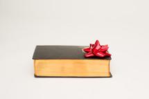 Christmas bow on a Bible