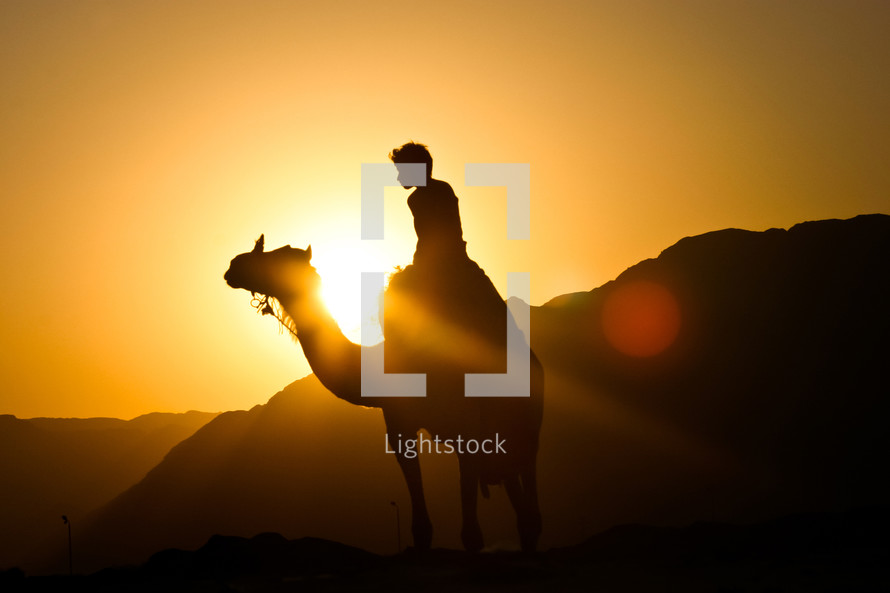 Camel ride at sunset in Egypt.