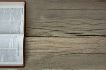 A Bible opened to Colossians