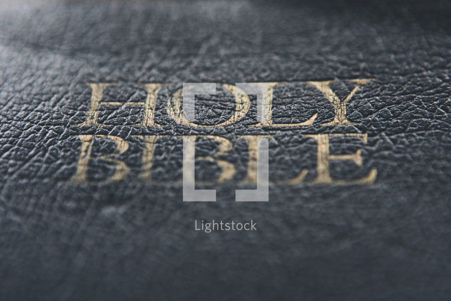 Holy Bible title cover