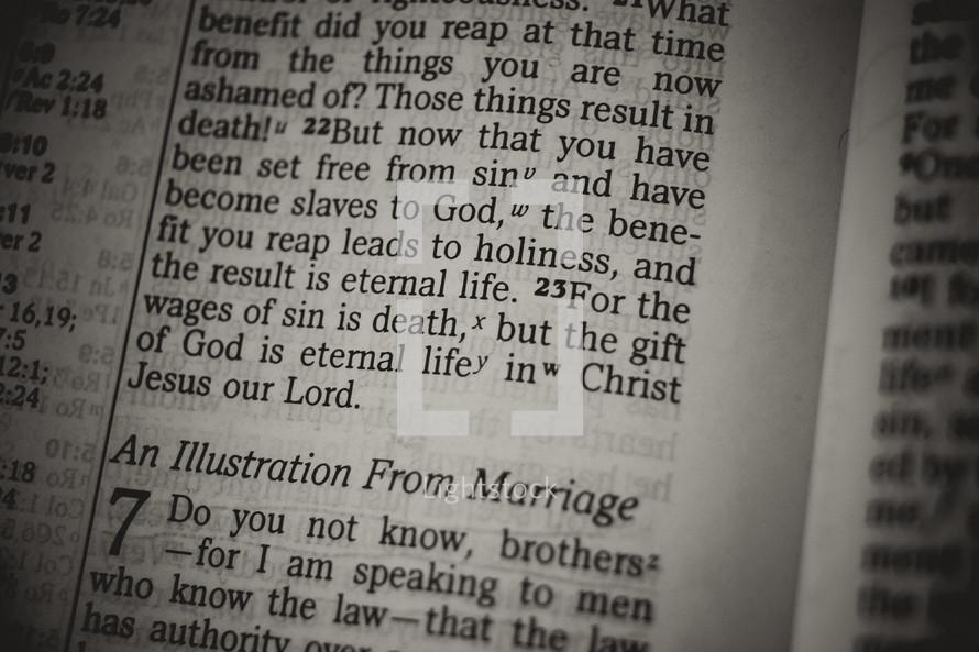 Bible verse - sin