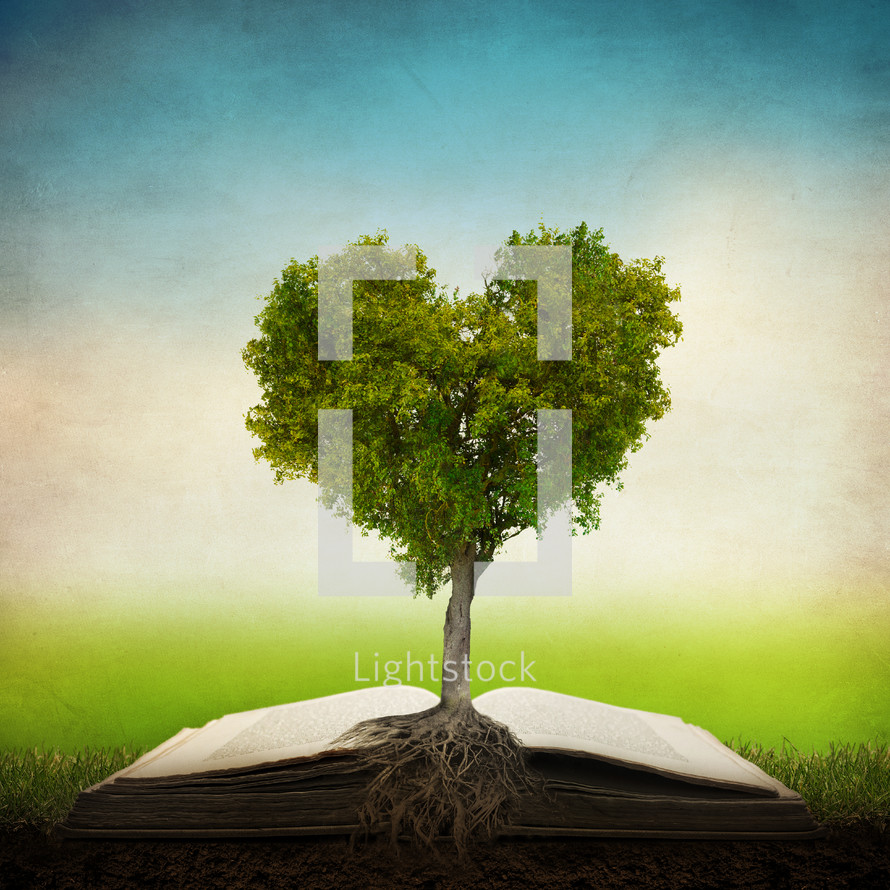 Heart-shaped tree growing out of an open Bible.