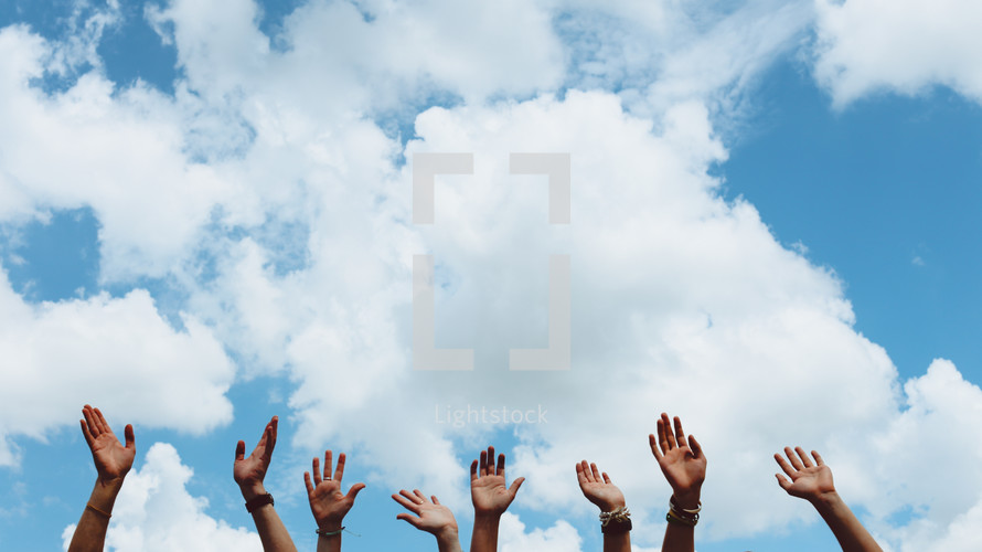 hands raised in the sky