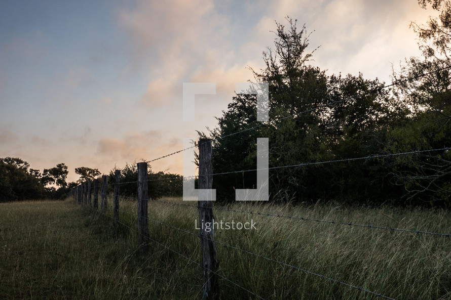 barbed wire fence on rural land