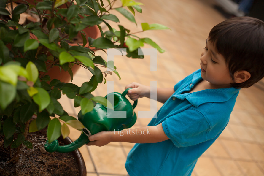 boy child watering a tree with a watering can