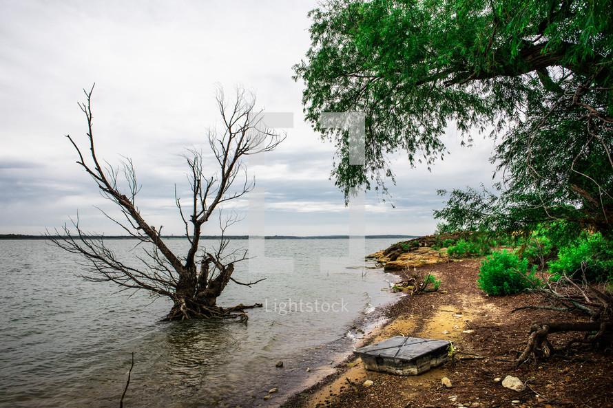 trash along a lake shore
