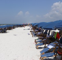 rental lawn chairs and beach umbrellas on a crowded beach