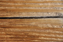 Wood grain on a plank
