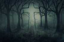 cross in the branches of a spooky forest