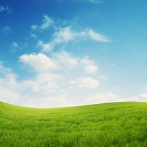 Rolling hills of green grass.