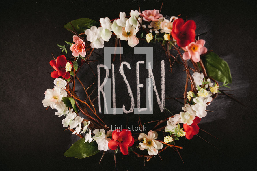 flowers and crown of thorns, Risen